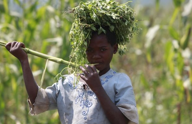 Working to go to school: a reality for Mave
