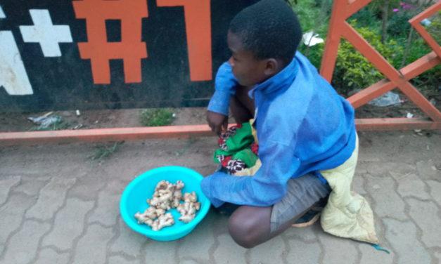Un enfant de Bukavu vend des gingembres pour préparer la rentrée